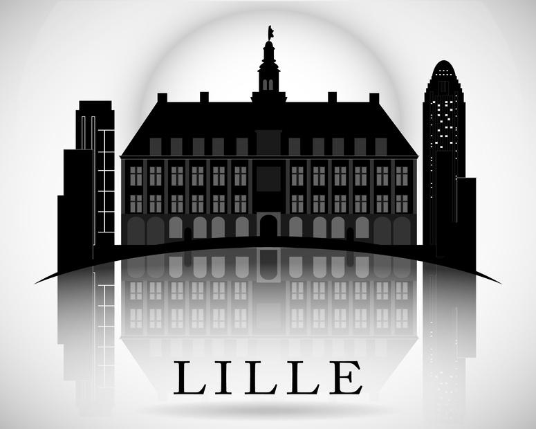 Lille est une ville du web seo